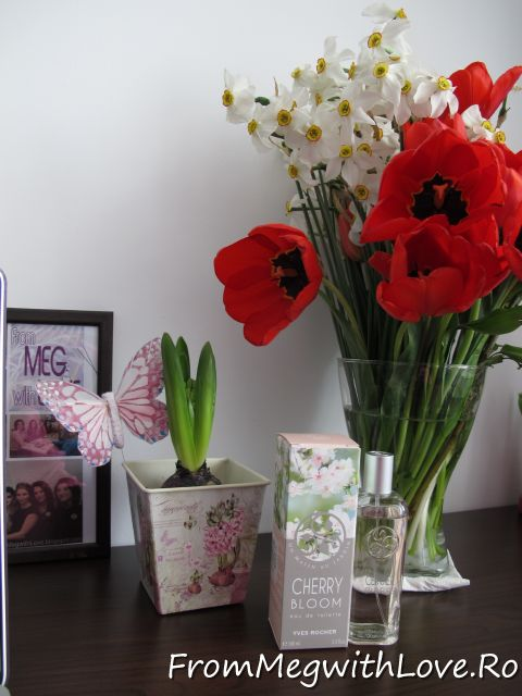 Yves Rocher – Apa de toaleta Flori de cires