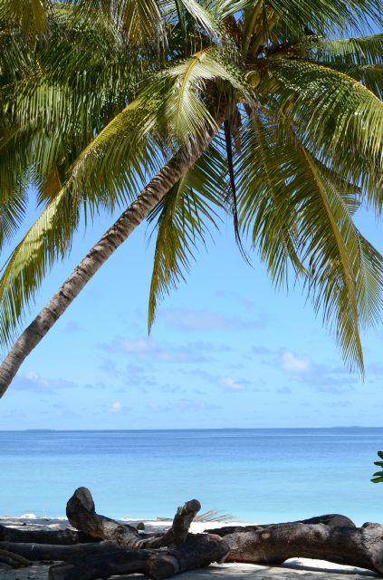 Turist în Maldive. Impresii + 5 motive ca sa vizitezi o insulă din Maldive